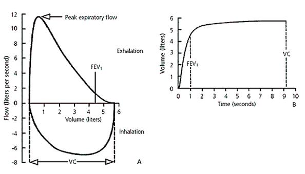 spirometry basics and centralization
